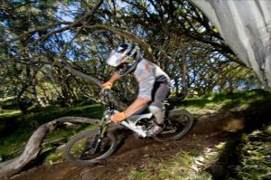 All Terrain Cycles - Accommodation Georgetown