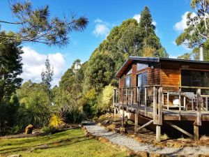 Southern Forest Accommodation - Accommodation Georgetown